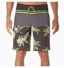 Reef Reef- Shore- Shorts- Black