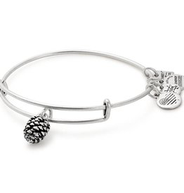 Alex and Ani Charity by Design, Pinecone EWB -Silver