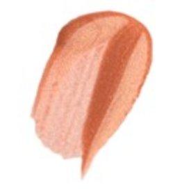 Trish McEvoy Beauty Booster Lip Gloss Sexy Nude
