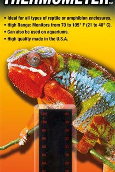 Zoomed Thermomètre à température hautes à reptiles