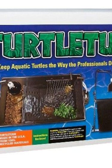 Zoomed Ensemble de bain pour tortue