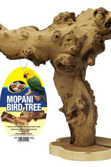 Zoomed Arbre Mopani pour oiseaux