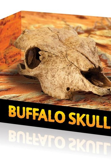 Exoterra Cachette en forme de crâne