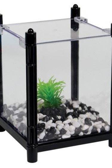 Aqua One Aquarium carré pour betta