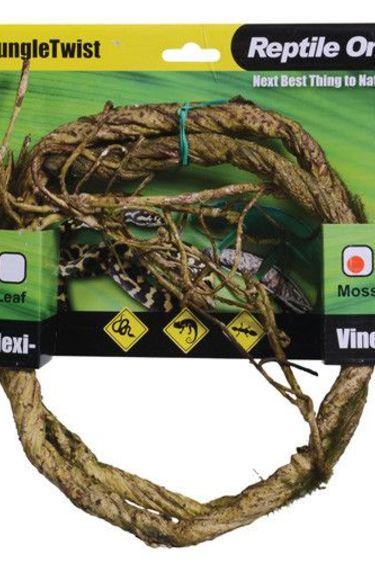 Reptiles treasures Vigne flexible de la jungle