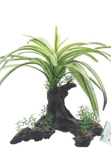 Fluval Plante Russelia 25cm