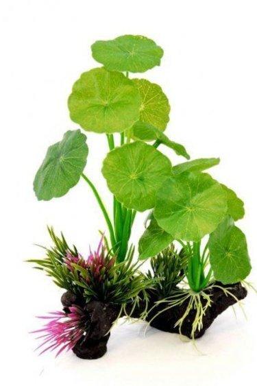 Origins Plante lillypad