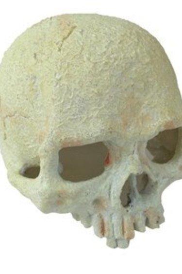 Exoterra Cachette phosphorescente grotte en forme de crâne