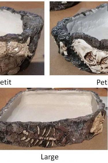 Penn plax Bol d'eau fossile carré