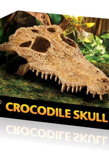 Exoterra Cachette en forme de crâne de crocodile