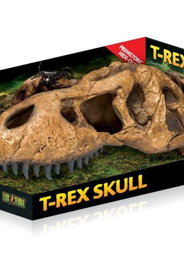 Exoterra Cachette en forme de crâne de tyrannosaure