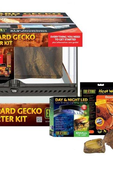 Exoterra Terrarium équipé pour gecko léopard