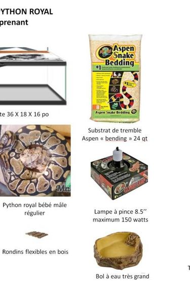 Magazoo Kit avec python royal