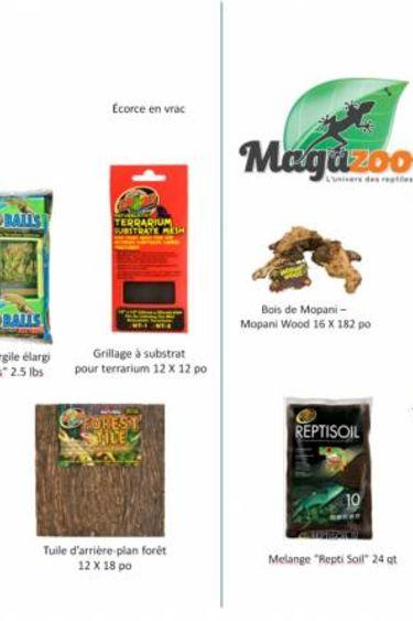 Magazoo Kit pour terrarium planté