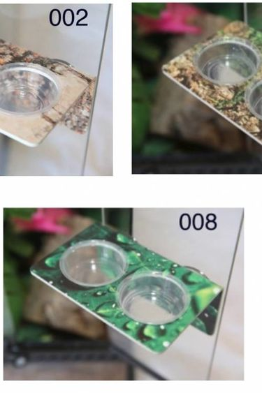 C3 Ledges Plateforme large pour gecko à 2 contenants de 1.5 oz à ventouse