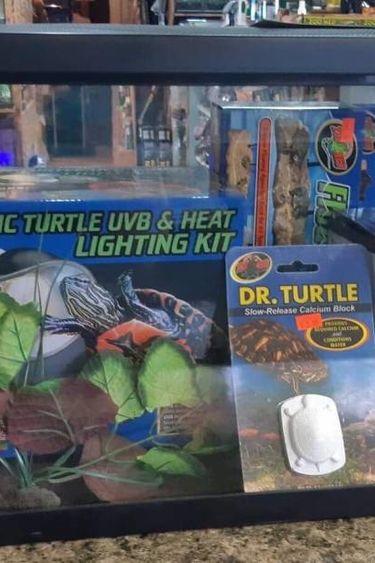 Magazoo Kit à bébé tortue aquatique