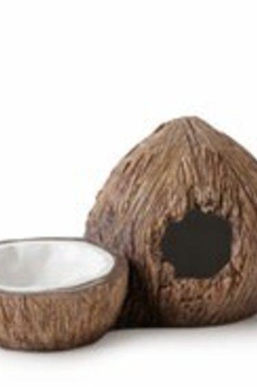 Exoterra Cachette et bol d'eau en forme de noix de coco - Coconut Hide & Water Dish