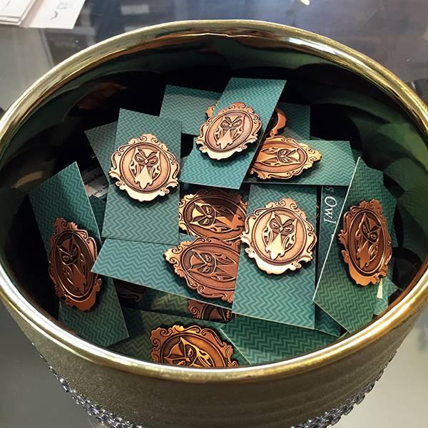 Brass Owl Pins