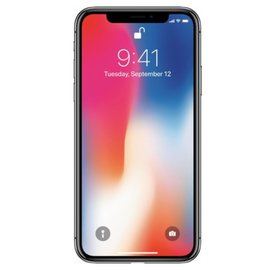 Apple Apple iPhone X 256GB Space Gray (Unlocked and SIM-free) (ATO)