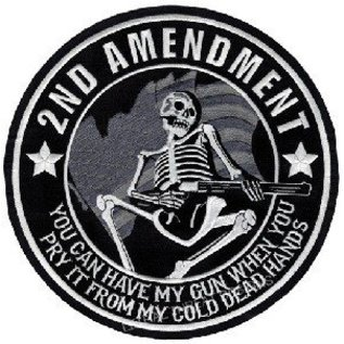 Jerwolf Enterprises Patch 2nd Amend Skeleton 11in