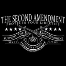 Route 66 Biker Gear Shirt 2nd Amend Protect Liberties