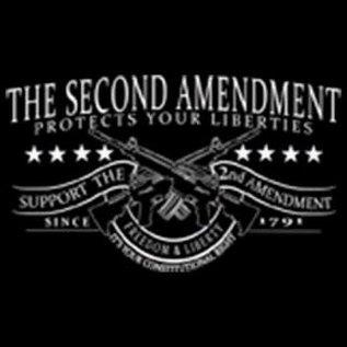 Route 66 Biker Gear Shirt 2nd Amend Protect Liberties