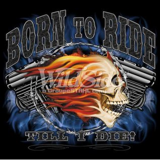Route 66 Biker Gear Shirt Born To Ride Skull