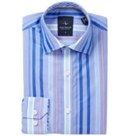 Tailorbyrd TailorByrd Woven Perry Stripe Dress Shirt
