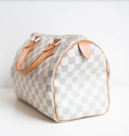 Louis Vuitton Louis Vuitton Speedy 25 - Damier