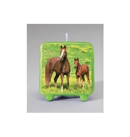 Creative Converting CHANDELLE CHEVAUX SAUVAGES
