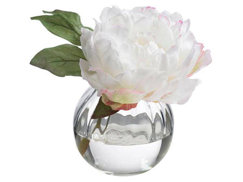 White Peony in Glass Bowl
