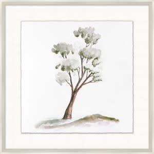 Park Tree 7 - 29.25x29.25