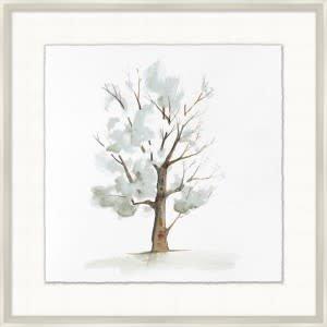 Park Tree 5 - 29.25x29.25