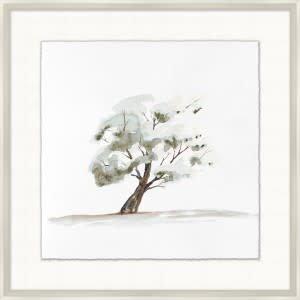Park Tree 4 - 29.25x29.25