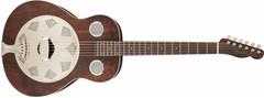 Fender Folk Instruments