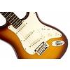 Standard Strat FMT, Rosewood Fingerboard, Amber Sunburst