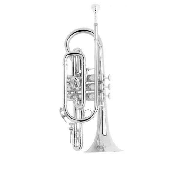 Bach Bach 184SML Stradivarius Professional Cornet, Silver Plated