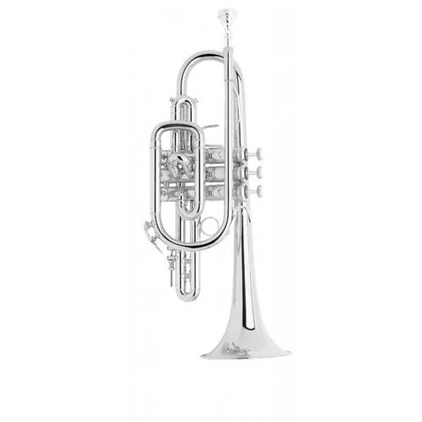 Bach Bach 181SML Stradivarius Professional Cornet, Silver Plated