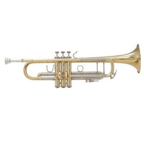 Bach LT18072G Stradivarius Lightweight Profess Bb Trumpet, #72 Gold Brass Bell