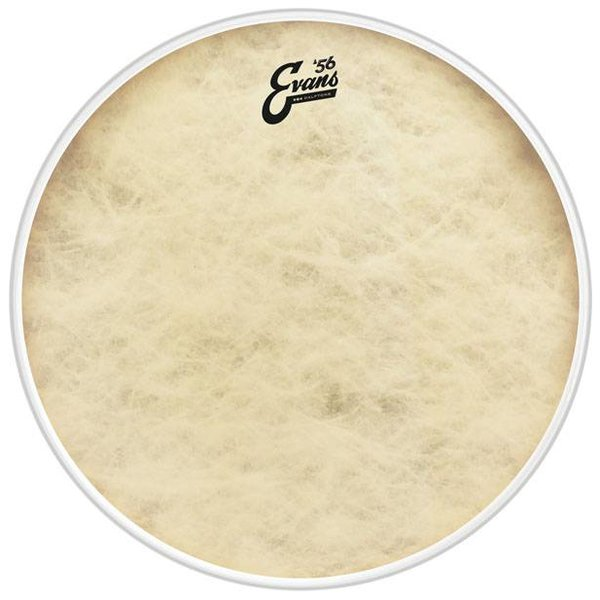 Evans Evans EQ4 Calftone Bass Drum Head