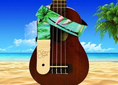 Folk Instrument Straps