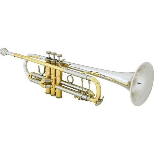Bach Bach 18043R Stradivarius 180 Series Profess Bb Trumpet, #43 Sterling Silver Bell
