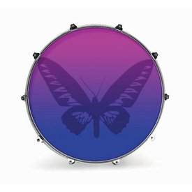 "Evans Evans 22"" Graphic Butterfly 1"