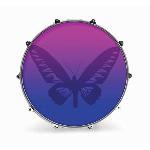 "Evans 22"" Graphic Butterfly 1"