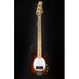 Music Man Music Man Man StingRay