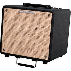 Ibanez Ibanez T80N 80 watts Acoustic Amp