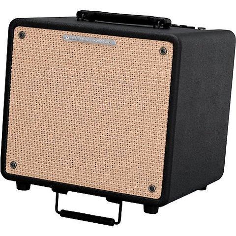 Ibanez T80N 80 watts Acoustic Amp