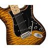 2017 Limited Edition American Professional Mahogany Stratocaster®, Violin Burst