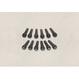 Taylor Taylor Ebony Bridge Pins with End Pin Set, Abalone Inlay