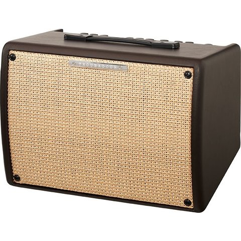 Ibanez T30II Troubadour 30 Watt Acoustic Guitar Amplifier